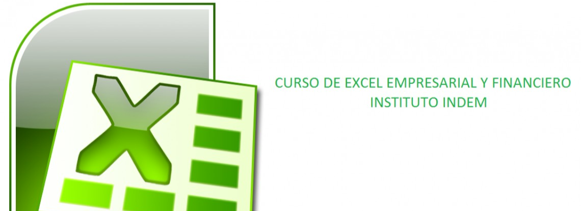 Business and financial Excel course